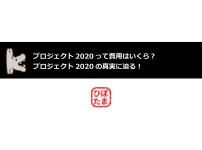 プロジェクト2020の費用