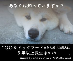 Cocogourmet300