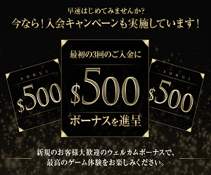 インターカジノ300